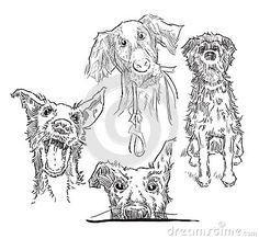 Illustration about Hand made sketch of dogs. Illustration of labrador, cartoon, friend - 59479164 Sketch Inspiration, Illustration Sketches, Moose Art, Cartoon, Dogs, Animals, Animales, Animaux, Pet Dogs