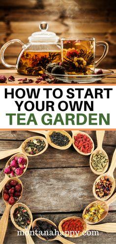 Easy Garden, Herb Garden, Vegetable Garden, Garden Ideas, Organic Gardening, Gardening Tips, Organic Herbs, Island Moos, Food Dog