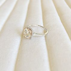 8mm Charles & Colvard Forever Brilliant Round Moissanite Two-Tone 14KWG Shank and 14KRG Prongs Micro Pave Halo Engagement Ring 2.3 CTTW by FireandBrilliance on Etsy https://www.etsy.com/listing/205323001/8mm-charles-colvard-forever-brilliant