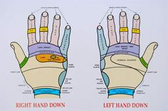 Reflexology Back of Hand