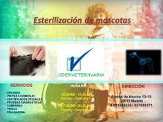 Clínica Centro Veterinario Lider-veterinaria http://www.lider-veterinaria.es/