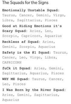 I like how Capricorn is on capital letters in the safety #1 one like b*tch put yo fvkin' seat belt on or I'll fvkin kill u!!!