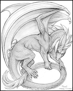 Warphammer's Talon by synnabar on DeviantArt Dragon Fantasy Myth Mythical Mystical Legend Dragons Wings Sword Sorcery Magic Drache drago Дракон  drak dragão coloring page for adults Kleuren voor volwassenen Färbung für Erwachsene coloriage pour adultes colorare per adulti para colorear para adultos раскраски для взрослых omalovánky pro dospělé colorir para adultos färgsätta för vuxna farve for voksne väritys aikuiset difficult schwierig difficile difficile difícil трудно  těžké  difícil vårt…