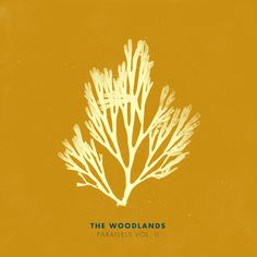 """The Woodlands new album """"Parallels Vol. II"""", a reinterpreted version of songs from previous releases by the band. Start Digging!!"""