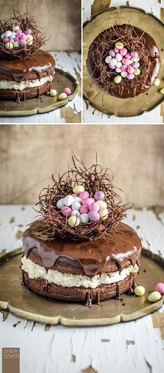 Chocolate Easter Egg Nest Cake | Chew Town Food Blog: Saving for design...use gf cake recipe, use crushed meringues, use rice or bean thread noodles for the nest, and gf mini eggs for decor.