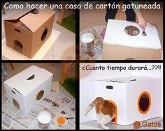 Casa de juego para gatos