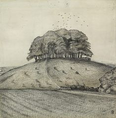 The Wood on the Hill (Wittenham Clumps). Paul Nash, 1912. Pen and black ink over graphite with wash.