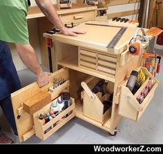 Roll-Around Cart.. More Woodworking Projects on www.woodworkerz.com