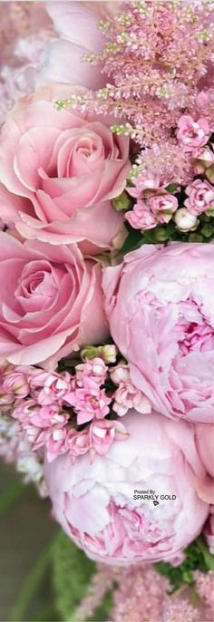 New Flowers Beautiful Pink Floral Arrangements Ideas Amazing Flowers, Beautiful Roses, Pink Flowers, Beautiful Flowers, Beautiful Gardens, Colorful Roses, Pink Petals, Red Roses, Paper Flowers