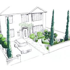 Front Garden Design For Large Town House Using Juniperus Skyrocket Cloud Pruned Ilex Crenata