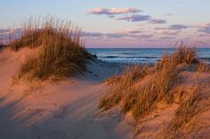 Orange light from the setting sun illuminates sand dunes on Pea Island, Outer Banks, North Carolina