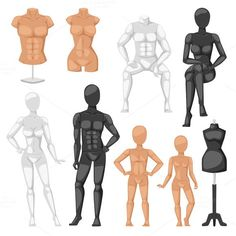 Dummy mannequin model vector. Human Icons. $5.00