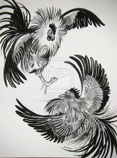 fighting rooster drawing - Google Search