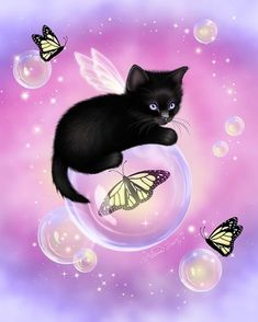 This cute black cat is really exited as she is flying. Or maybe she just wants to catch the butterflies trapped in the bubbles or maybe even save them. Tough decision to decide what she actually wants to do