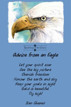 Advice from an Eagle https://ramblingsoftheclaury.wordpress.com/2017/01/23/advice-from-an-eagle/