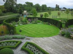 buxus hedging perennials - Google Search