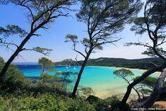 La plage Notre-Dame sur l'île de Porquerolles