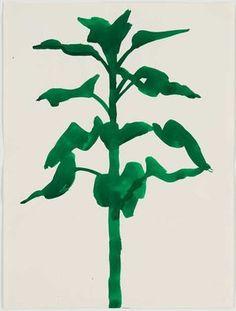 Sunflower 1957