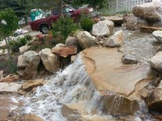 Large water feature in a residential backyard