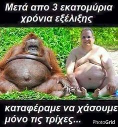 Αποτέλεσμα εικόνας για survivor greece αστειεσ εικονεσ