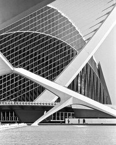 The Absolution: Santiago Calatrava