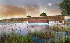 piscine écologique de plein air