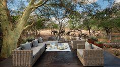 Guest Area at Ngala Safari Lodge