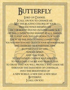 "The Butterfly Prayer poster addresses the spirit of this wondrous creature, seeking to learn from its transformation, whimsical flight, and fragility. 8 12"" x 1"
