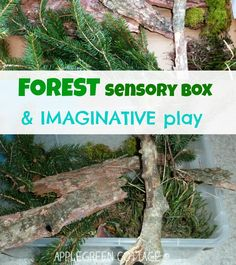 sensory bin natural materials for kids -   Sensory bins represent nearly limitless possibilities for child's sensory development. Mixed with imaginative play, no two sensory bins will have the same life. Have a look what happened to our 'forest sensory bin' :)