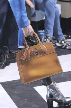 Louis Vuitton at Paris Fall 2016 (Details)