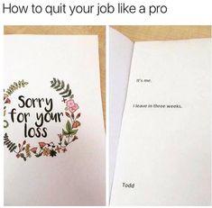 Best Funny Hilarious Dankest Memes, Believe Us! Work Memes, Work Humor, Work Funnies, Funny Jokes, Hilarious, Funny Memes About Work, Funny Texts, Super Funny Pictures, Funny Pics