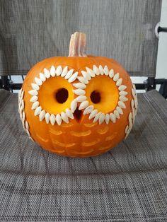 Happy H-owl-oween!  Owl pumpkin with pumpkin seeds.