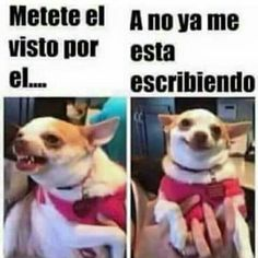 Jajajaja #memes #chistes #chistesmalos #imagenesgraciosas #humor http://www.megamemeces.com/memeces/imagenes-de-humor-vs-videos-divertidos