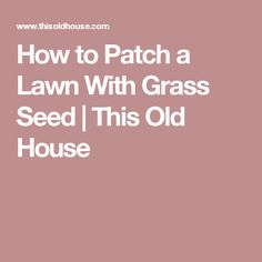 How to Patch a Lawn With Grass Seed | This Old House