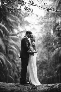 Mt Tamborine Wedding ~ Jeremy and Anna by Richard Grainger Photography Rainforest Locations, Mt Tamborine, Cedar Creek, Gold Coast, Wedding Photos, Wedding Ideas, Getting Married, Natural Beauty, Anna