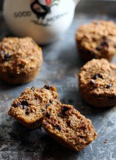 Pumpkin Chocolate Chip Oat Protein Muffins