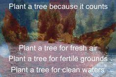 Air Plants, Fertility, Great Places, Diabetes, Trees, Backyard, Google, Pictures, Life