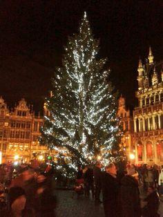 Christmas tree, Grote Markt, Brussels
