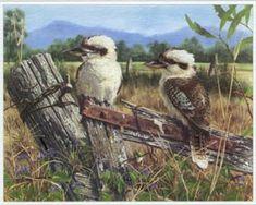 GORDON HANLEY - Completely unhinged ( Kookaburras)