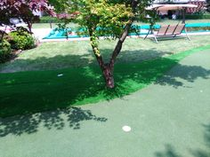 Golf tips, tricks and products Putt Putt Golf, Artificial Turf, Grass, Golf Courses, Outdoor Decor, Astroturf, Grasses, Herb