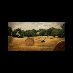 Paul Ernest - Digital Artist