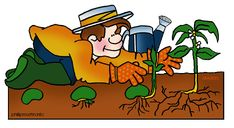 Plants - Free Science Lesson Plans, Activities, Powerpoints, Interactive Games