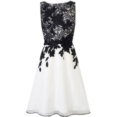 Coast Anabelle Artwork Dress, Black/White ($235) ❤ liked on Polyvore featuring dresses, vestidos, short dresses, black and white cocktail dress, lace maxi dress, maxi dresses, black and white maxi dress and evening dresses