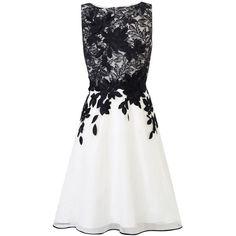 Coast Anabelle Artwork Dress, Black/White ($255) ❤ liked on Polyvore featuring dresses, vestidos, short dresses, midi dress, short sleeve dress, cocktail dresses, maxi dress and short cocktail dresses