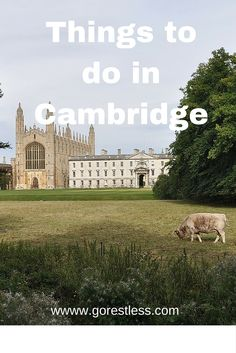 Things to do in Cambridge  Cambridge is a rather small city and it has many…