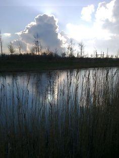 Diepsmeerpark, 19 januari 2015