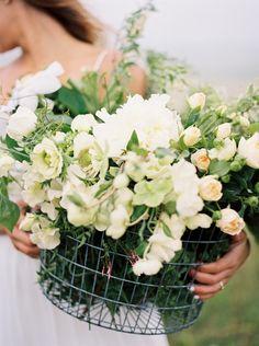 Spring White Blossom✿⊱╮