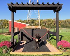 A wash rack that is also a pergola!