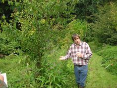Temperate Climate Permaculture: Using Succession in Permaculture Martin Crawford, the UK's premier Forest Gardener in his own Forest Garden. http://www.tcpermaculture.blogspot.pt/2011/06/permaculture-...