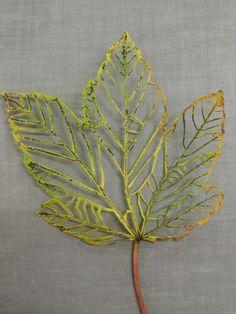 Lovely lasered leaf art